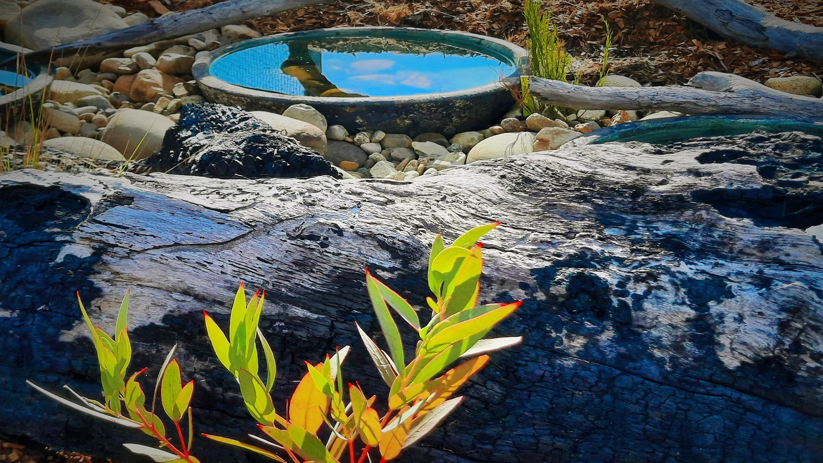 A ground level water feature in a rocky setting